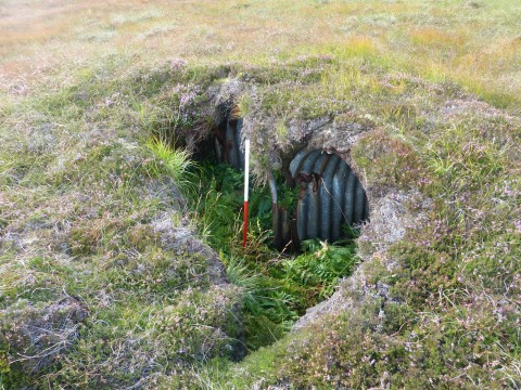 Y073 - Defensive Firing Position on Wee Fea